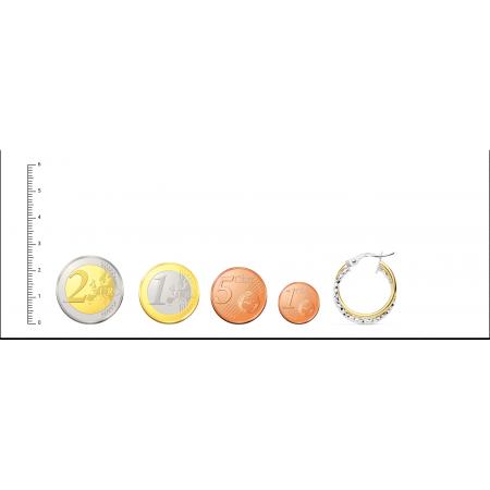 Pendientes de Aro dobles bicolor Oro 18kt