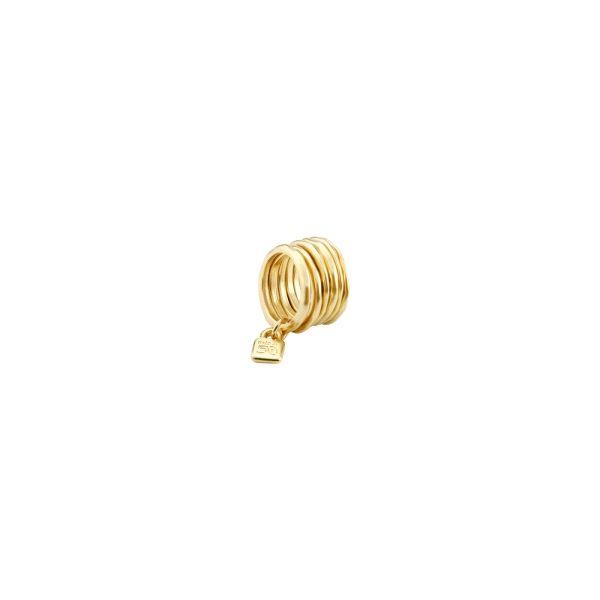 Anillo -Prisionero- con anillas doradas